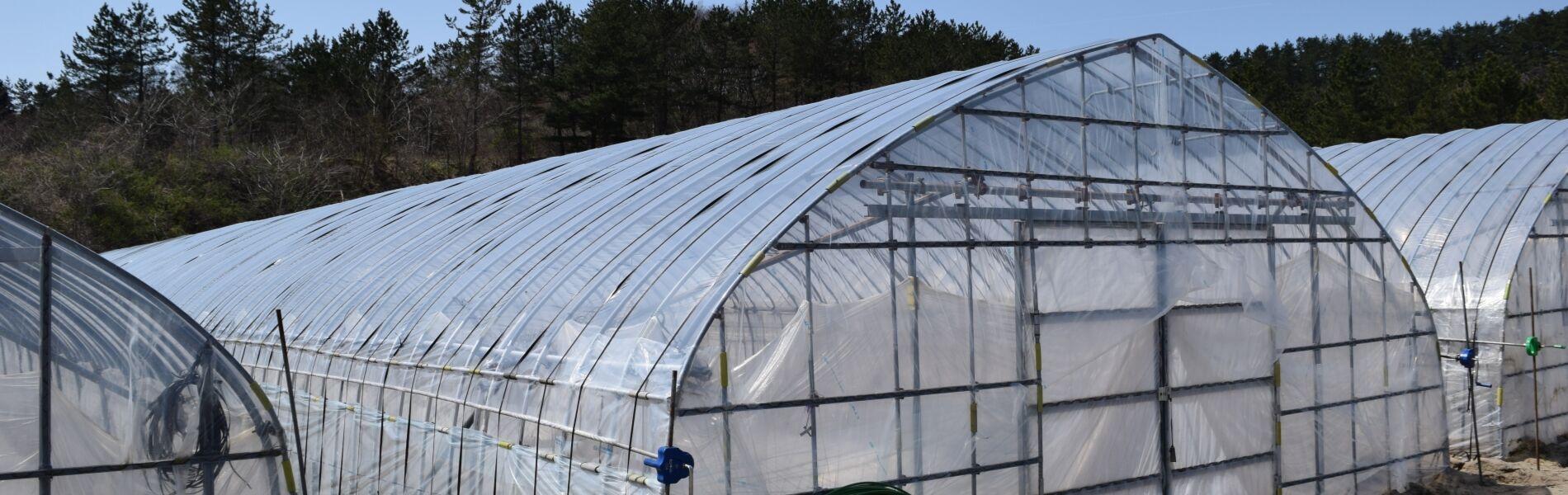 農業温度管理サービス